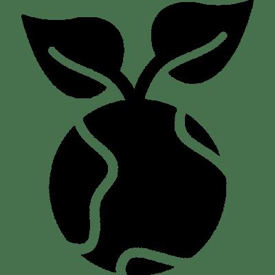 Producto Ecosustentable